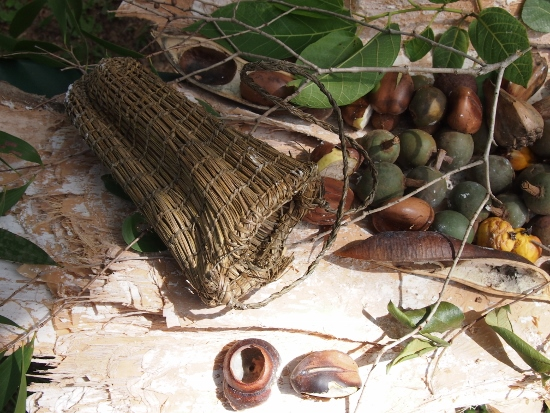 Aboriginal bush foods and medicines Dilly bag