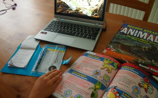 Pokemon homeschooling blog