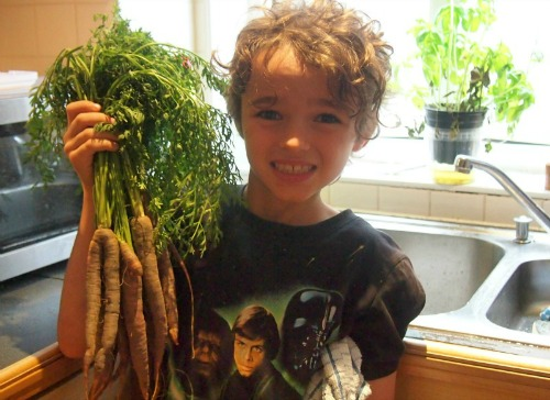 food homeschooling purple carrots blog