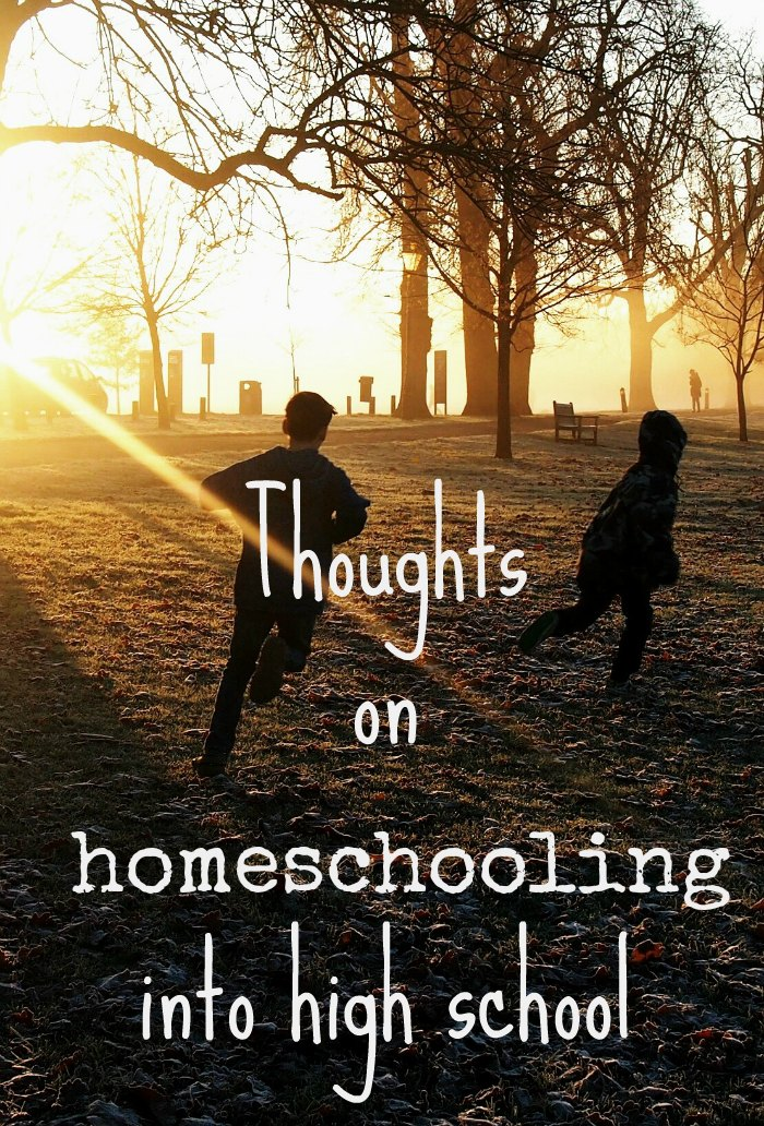 Thoughts on homescholing into highschool. How has homeschooling turned out and how we feel about ebterring the high school years as a homeschooling or unschooling family.