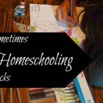 Homeschooling Sucks Sometimes