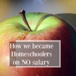 Homeschooling on No Salary